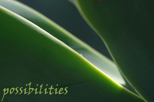 Possibilities - Women's Retreats, Workshops and Facilitator Training